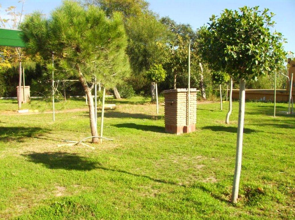 Camping Faro Trafalgar parcela 45 m2