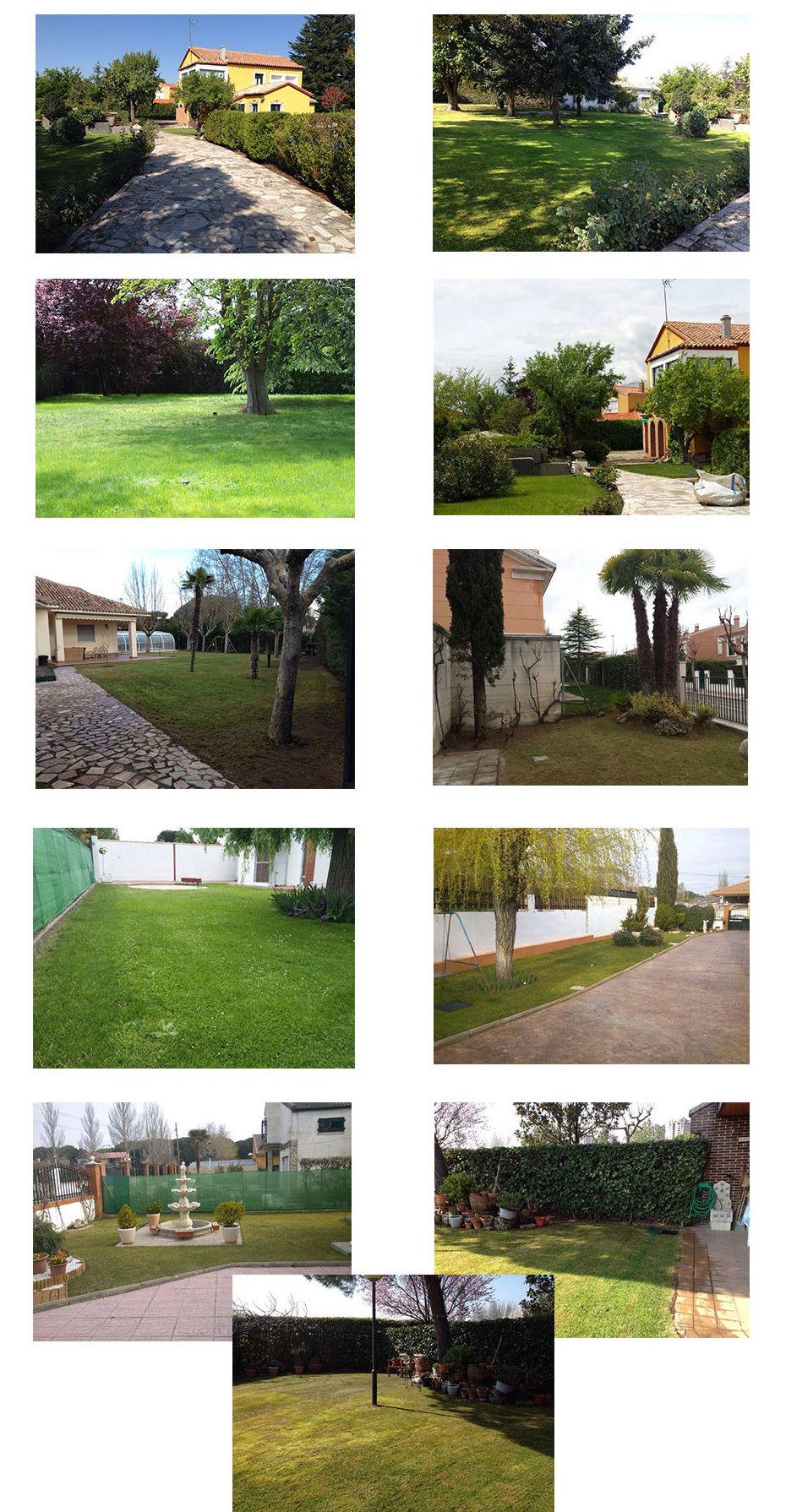 Foto 1 de Limpieza (empresas) en  | Jardinería y Limpieza Res, S.L.