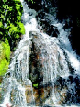 Foto 6 de Limpieza (empresas) en  | Jardinería y Limpieza Res, S.L.