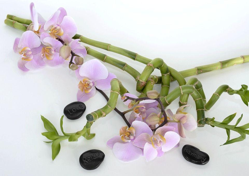 Tratamientos corporales: Tratamientos de Centro de Belleza y Bienestar Izaskun