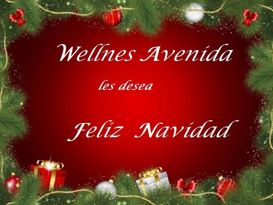 Wellnes Avenida