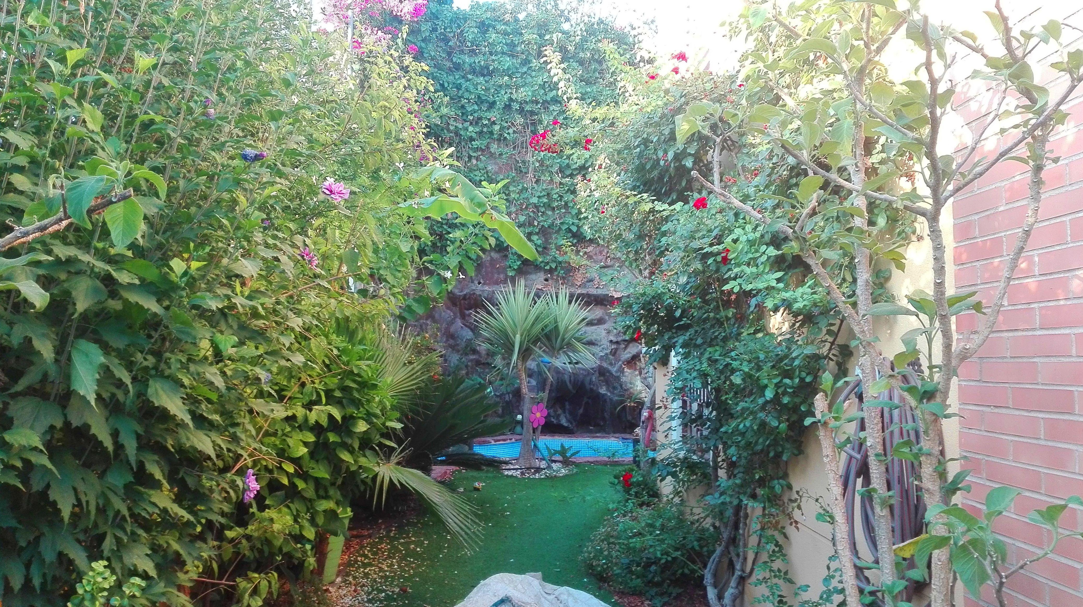 Foto 22 de Diseño y mantenimiento de jardines en Almería   Jardínicos