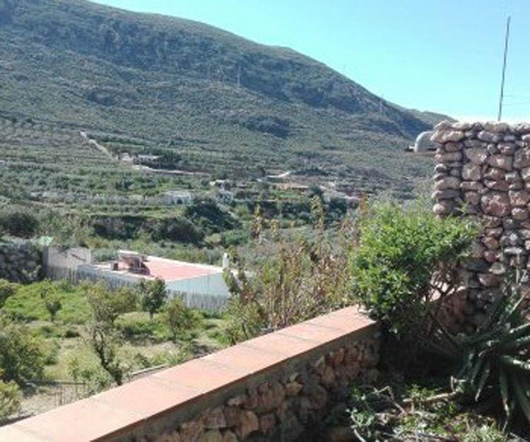 Conservación y mantenimiento de jardines en Vera