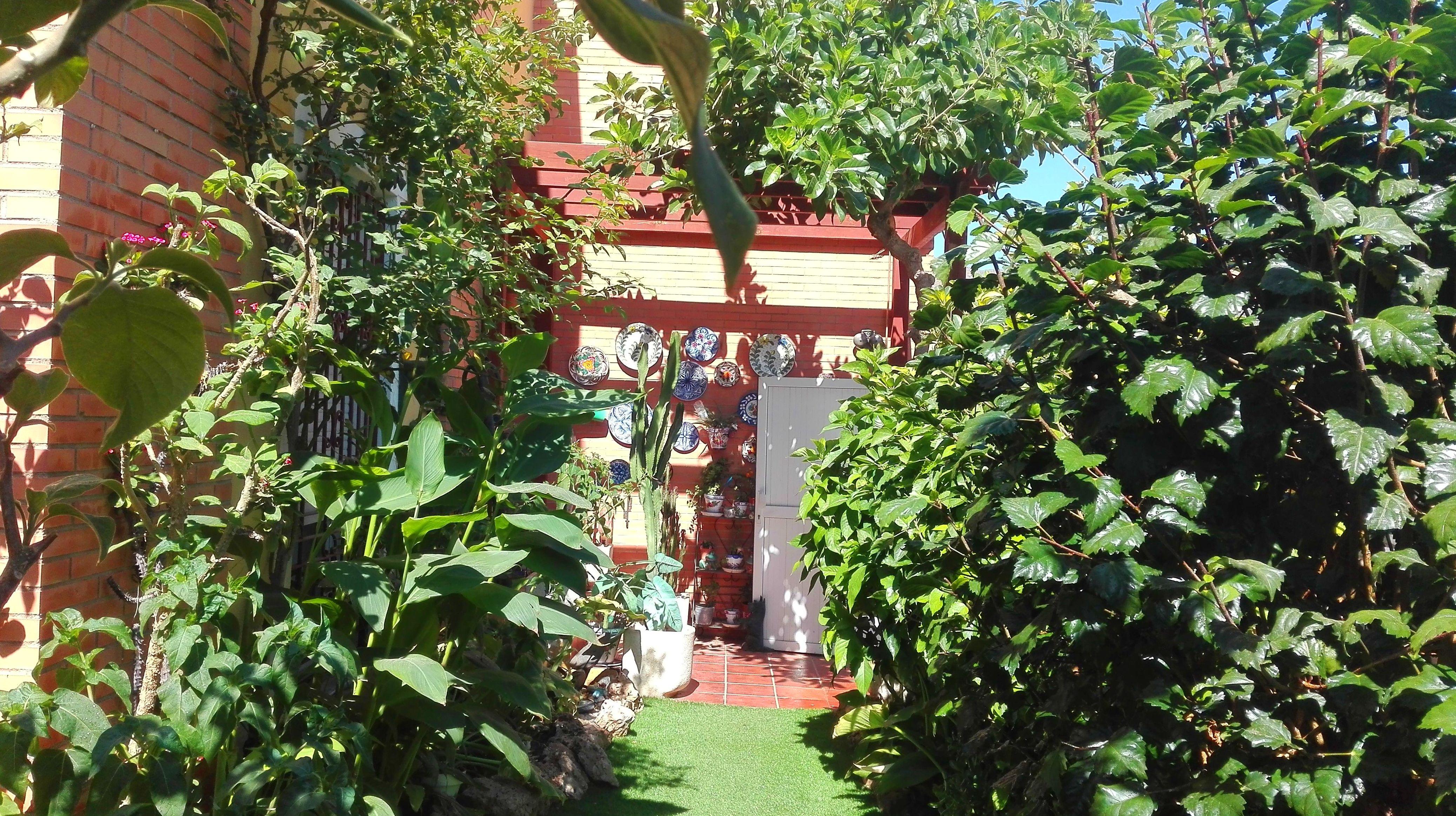 Foto 23 de Diseño y mantenimiento de jardines en Almería | Jardínicos