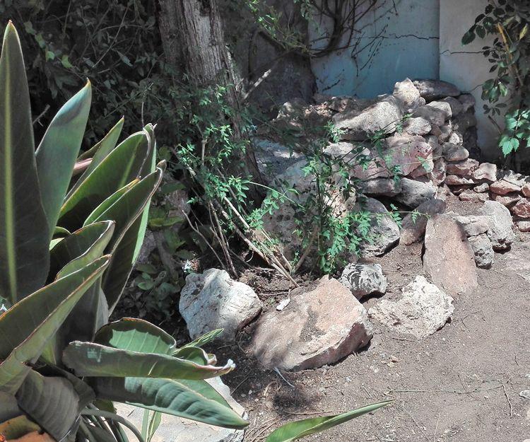 Empresa de jardinería en Vera