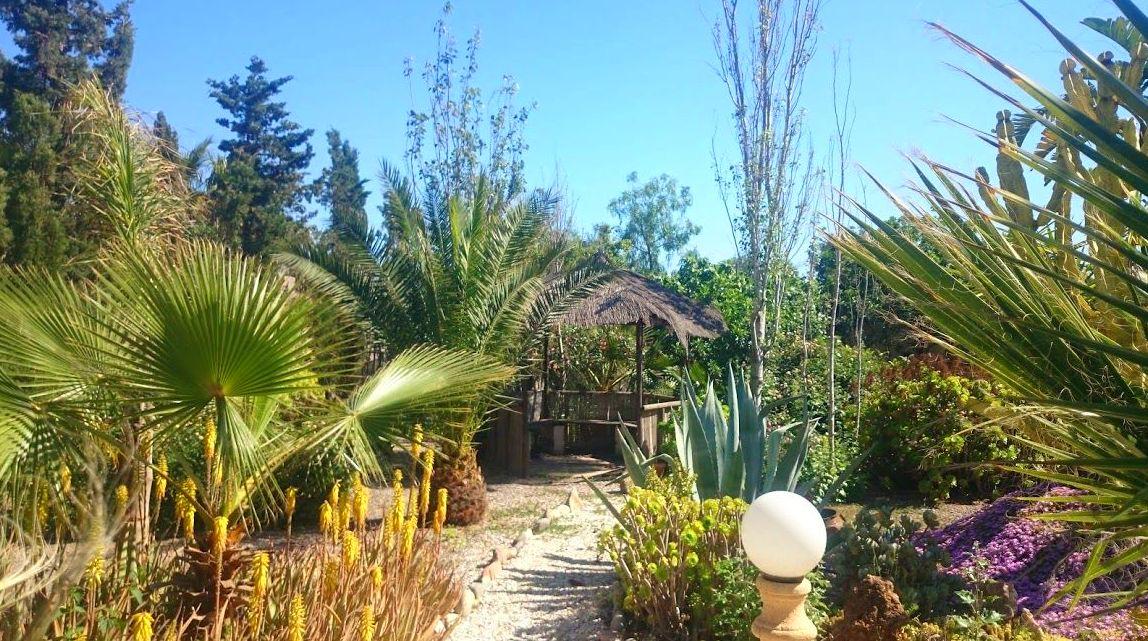 Foto 25 de Diseño y mantenimiento de jardines en Almería   Jardínicos