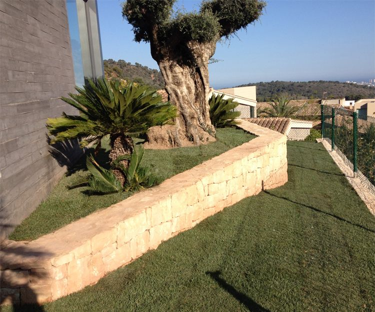 Mantenimiento de jardines en San Antonio de Benagever