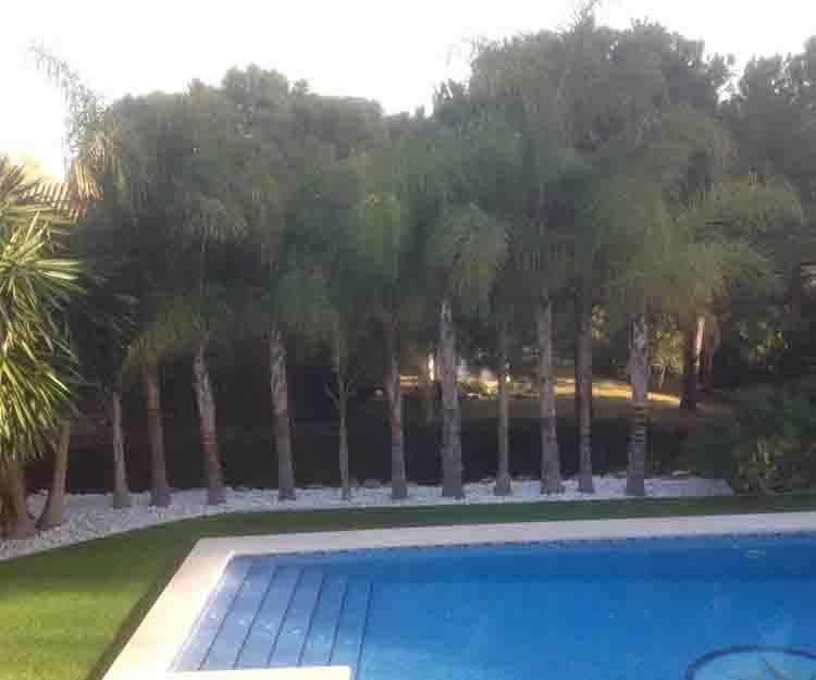 Jardines para piscina en Valencia