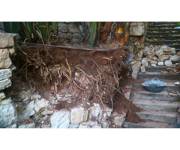 Creación de jardines en Sagunto