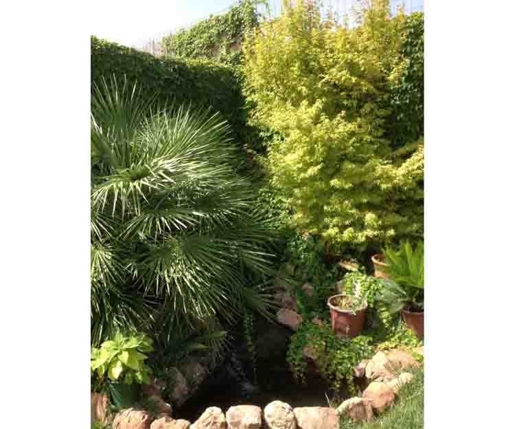 Diseño de jardines en Canet d´en Berenguer