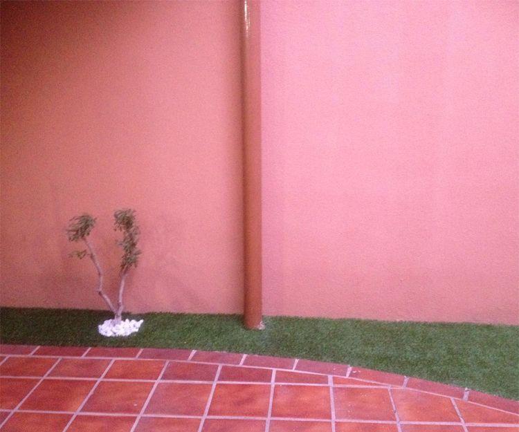 Mantenimiento de jardines en San Antonio de BenageverMantenimiento de jardi
