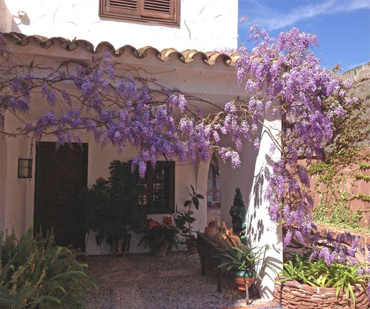 Mantenimiento de jardines en Almenara