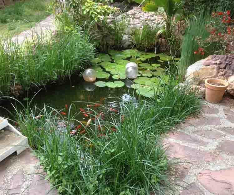 Diseño de jardines en Torrent