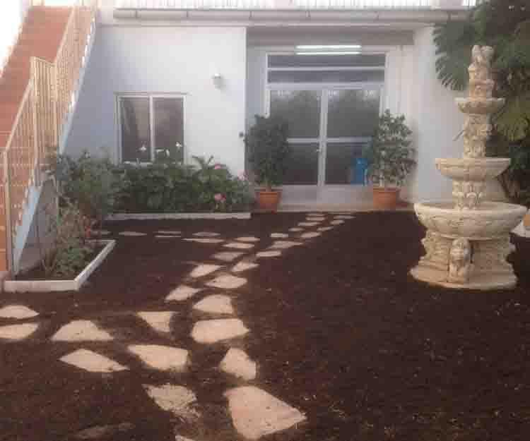 Diseño de jardines en Sagunto
