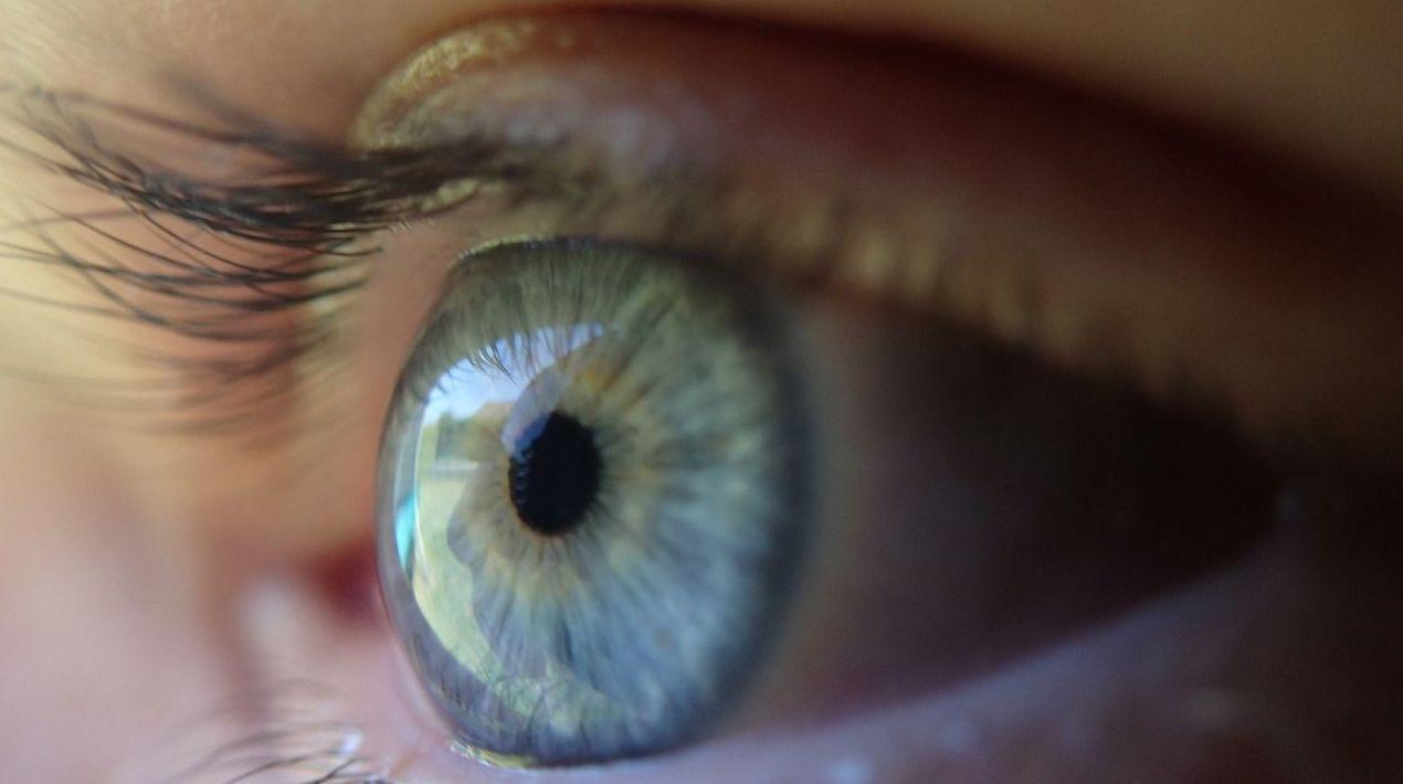 Foto 5 de Especialistas en oftalmología en Logroño | Enrique Rodríguez Rocandio