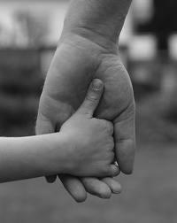 Derecho de Familia: Ramas del Derecho de Bermejo Arteagabeitia, A.