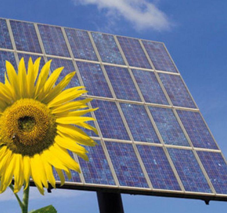 Asesoramiento en energía renovable