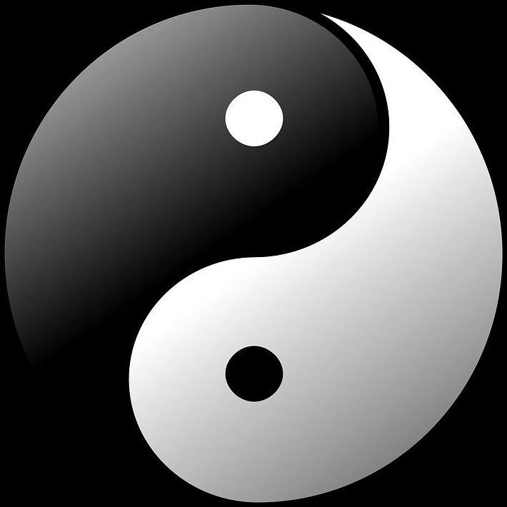 FUNDAMENTOS DE LA MEDICINA TRADICIONAL CHINA. Gratuito 27 Octubre: Cursos de Naturopatía  de Fortalecimiento Vital    Gijón&Madrid