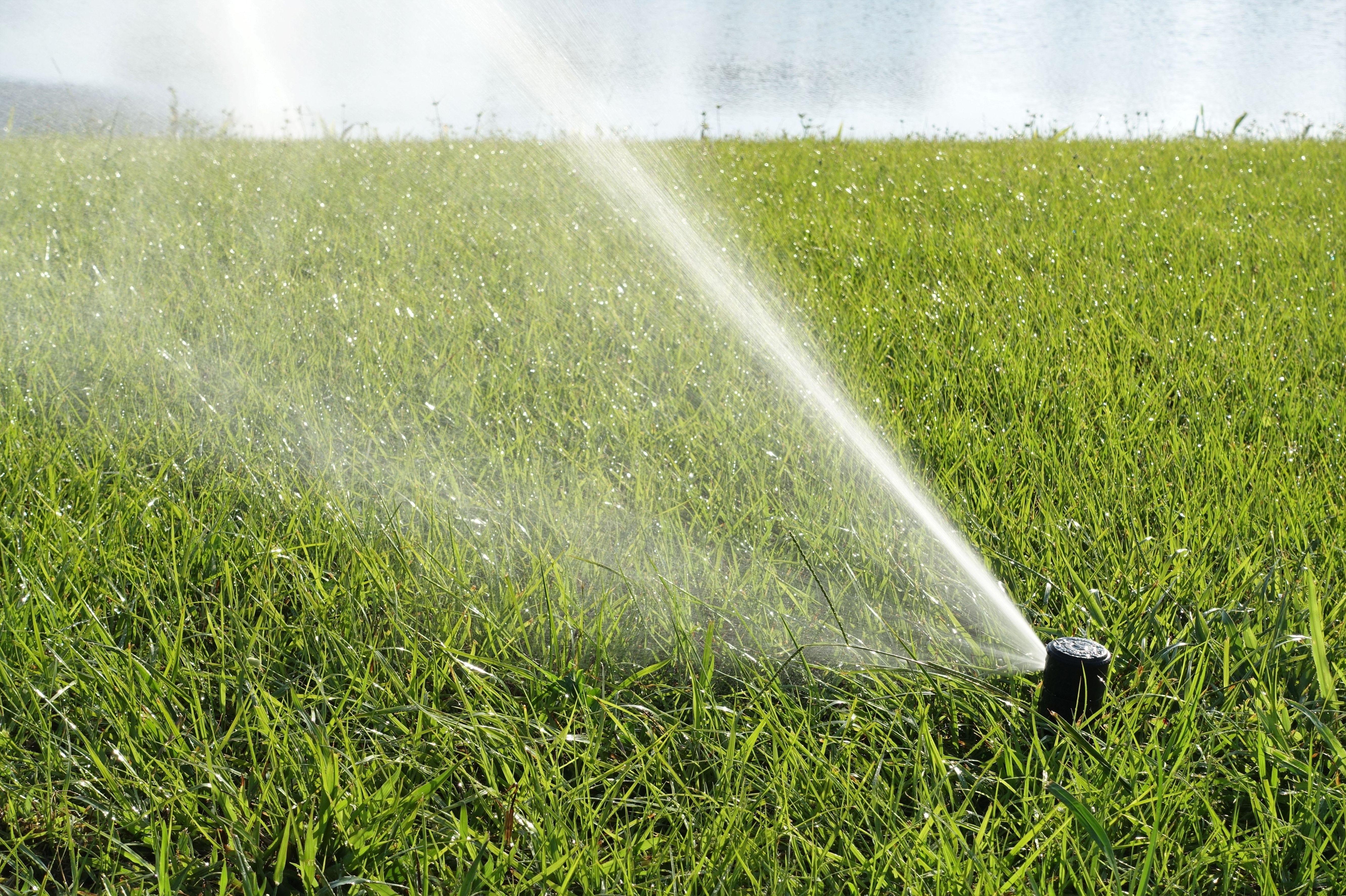Instalación de riego: Servicios de Jardinería JMG