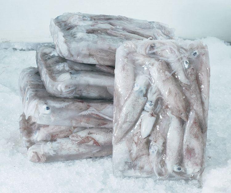 Venta al mayor de pulpo congelado en Telde, Las Palmas