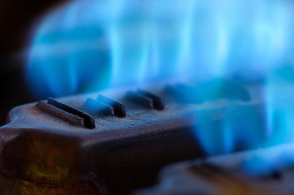 Empresas de Gas y Petroquimicas : ¿Qué hacemos? de Guesa