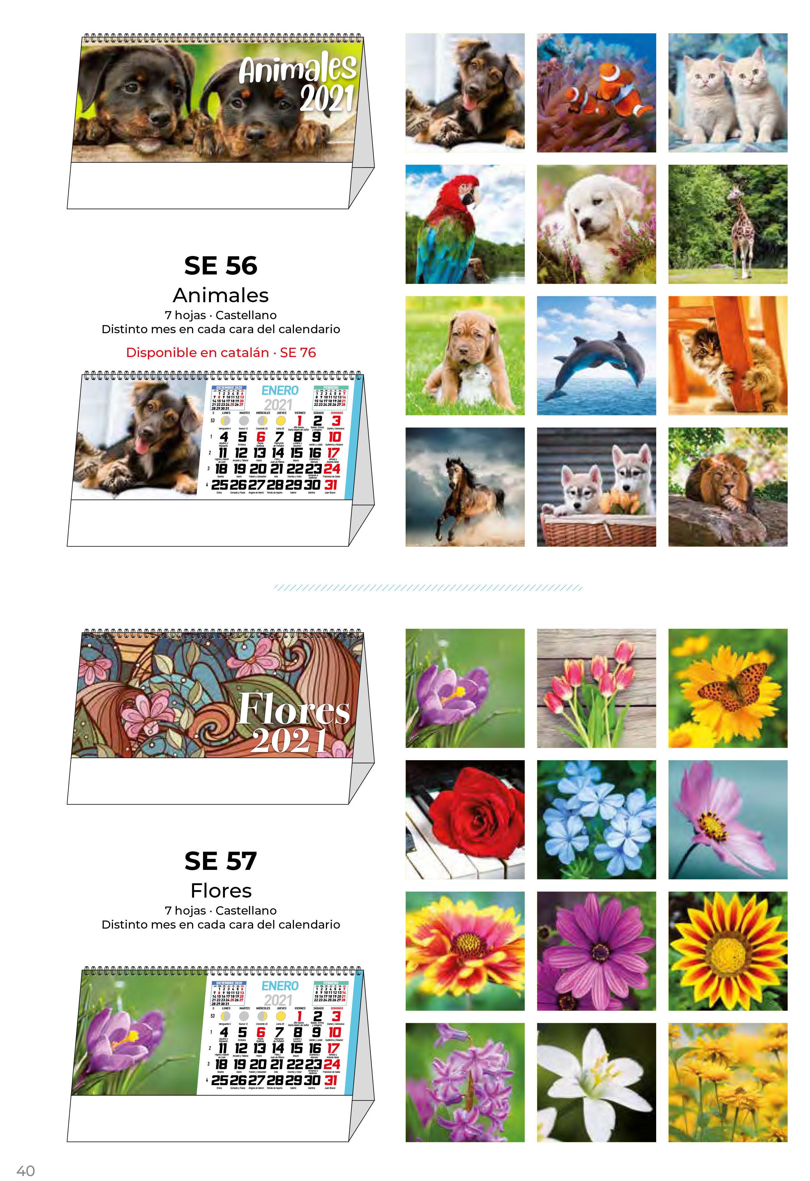 Foto 42 de Calendarios en Madrid | Gráficas Kalendex