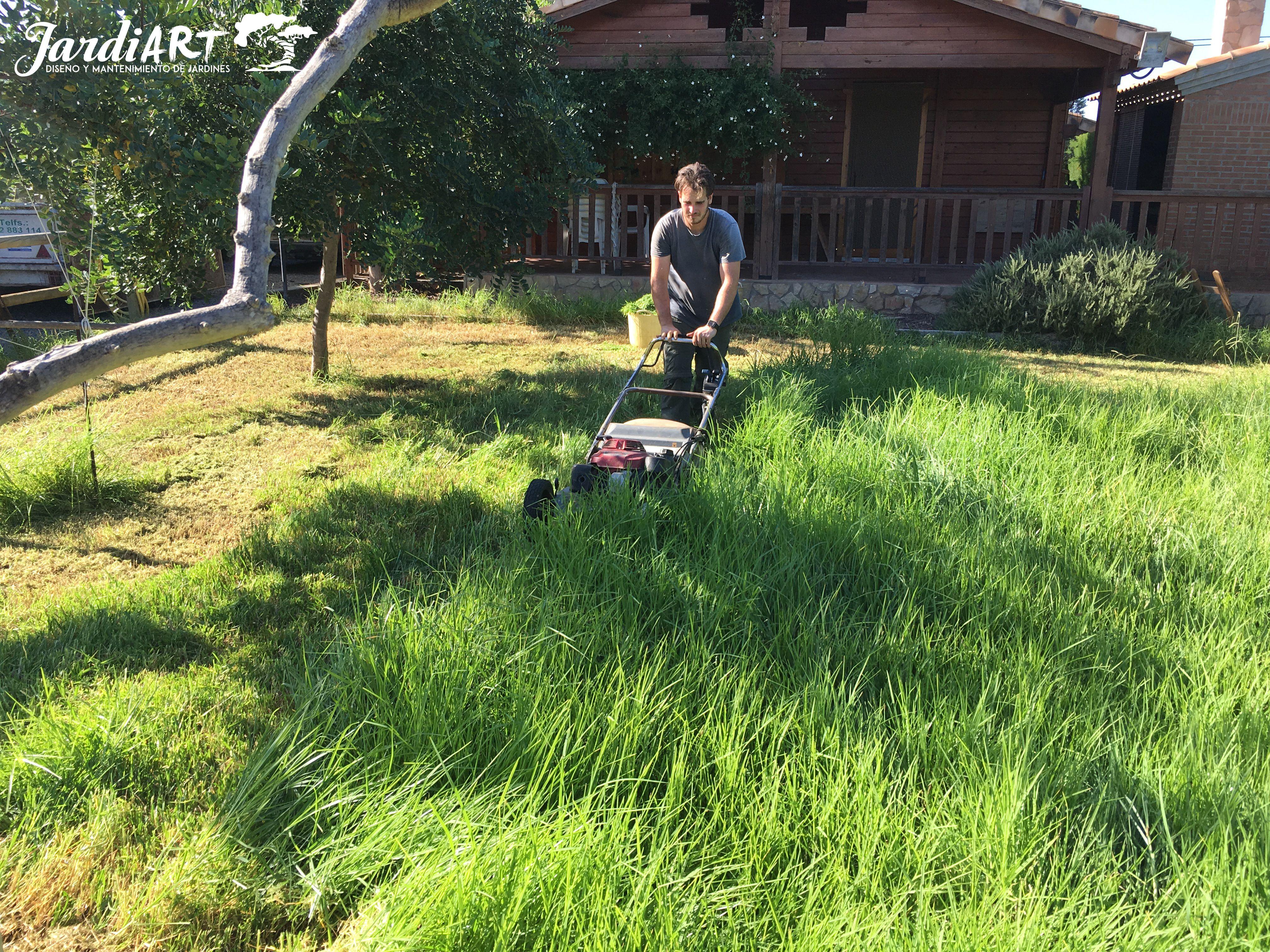 Mantenimiento y limpieza de jardines: Servicios de Jardiart