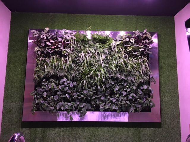 Jardines verticales: Servicios de Jardiart