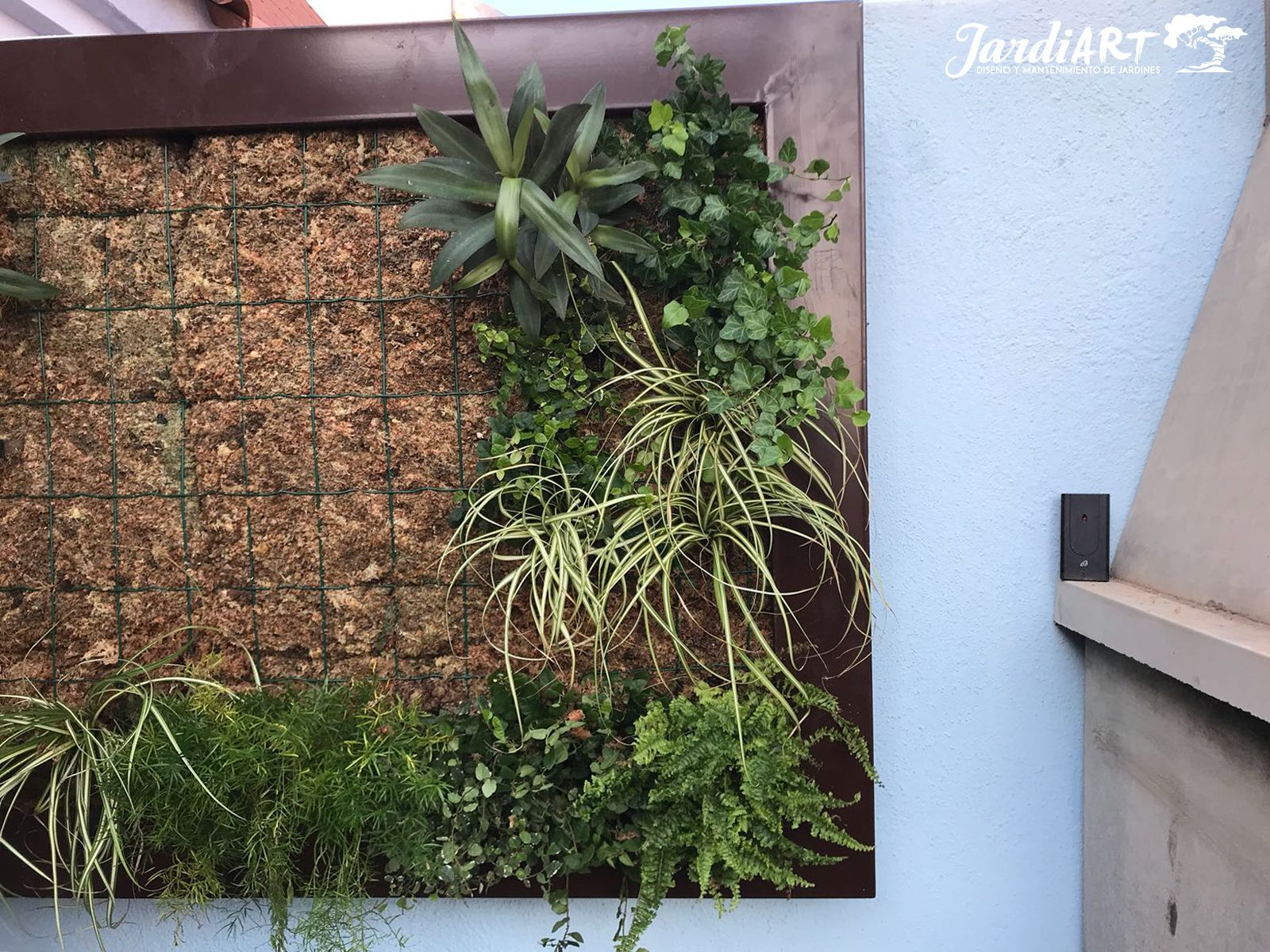 Diseño y mantenimiento de jardines verticales