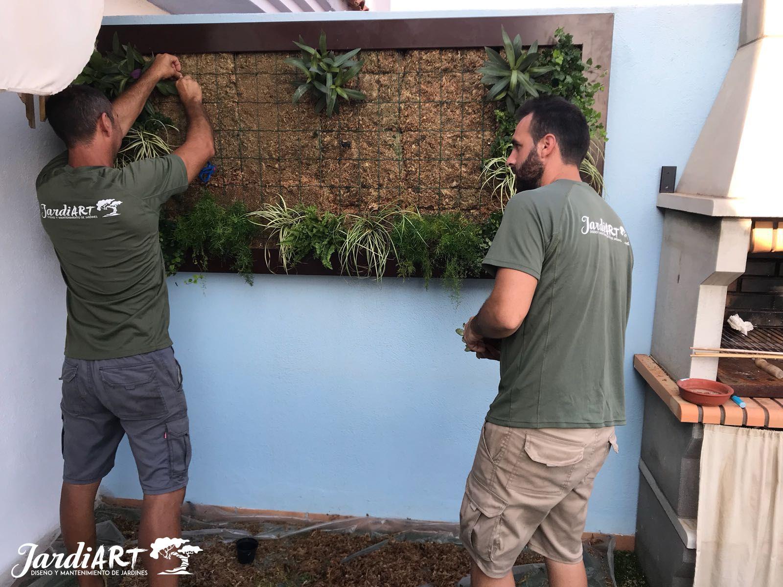 Expertos en jardines verticales en Castellón