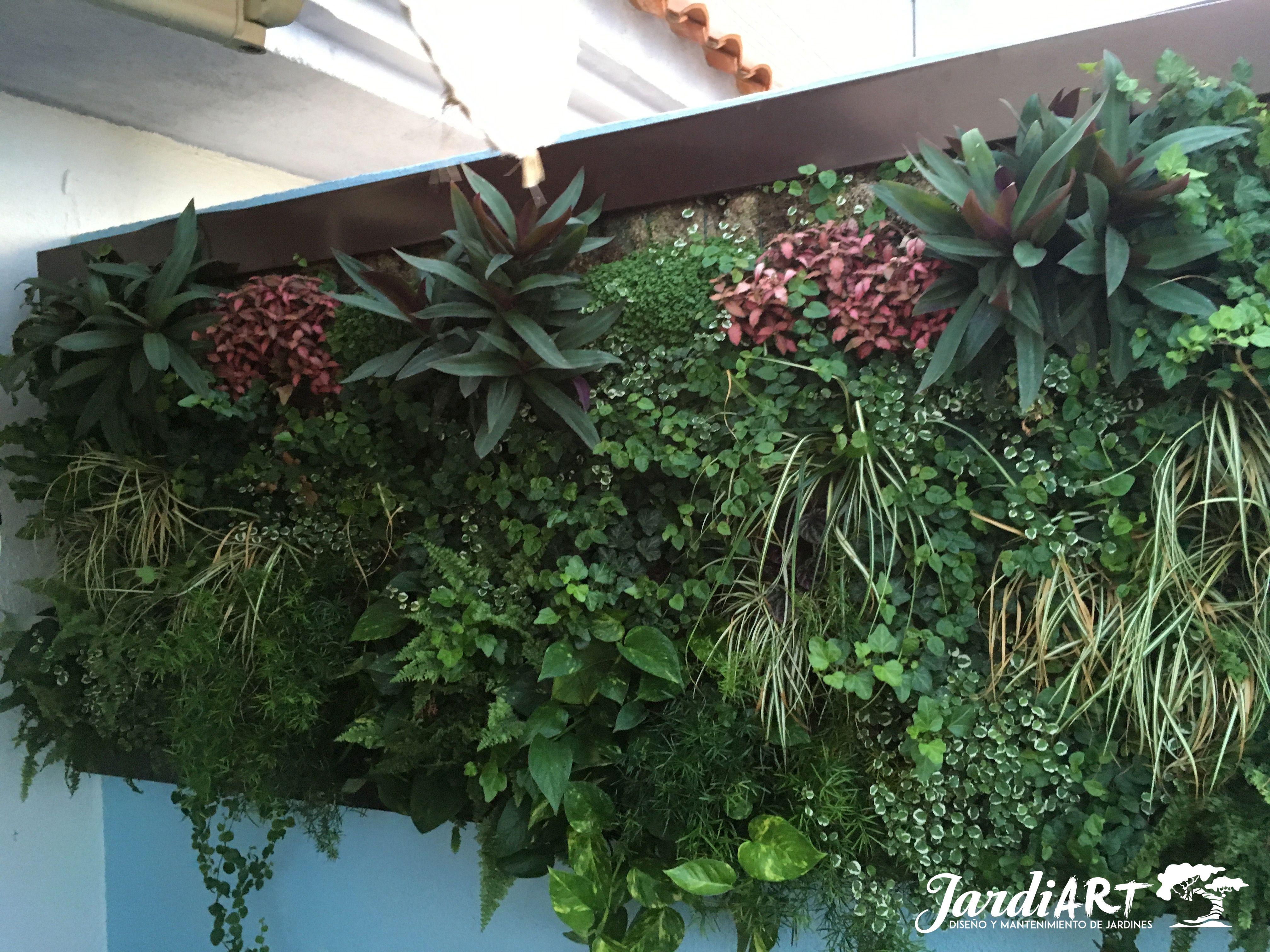Instalación y mantenimiento de jardines verticales