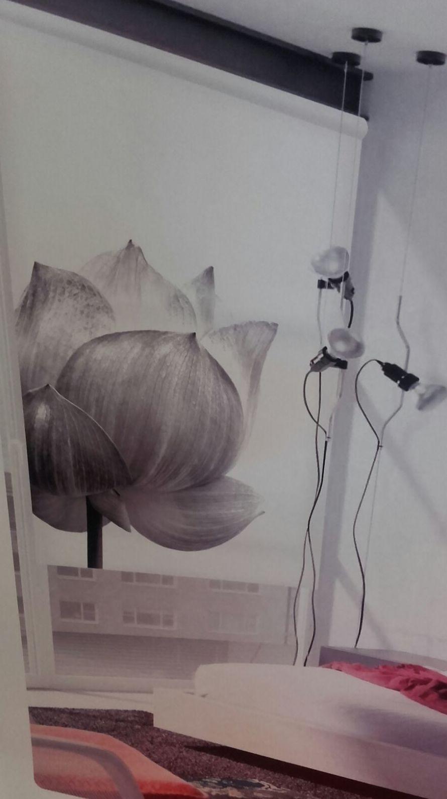 Instalación de estores en Lleida