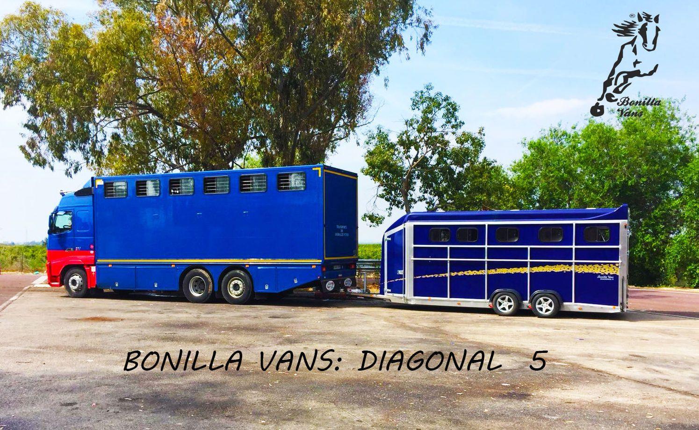 Foto 5 de Remolques para caballos de alta gama en Pedrosillo de Alba | Bonilla Vans