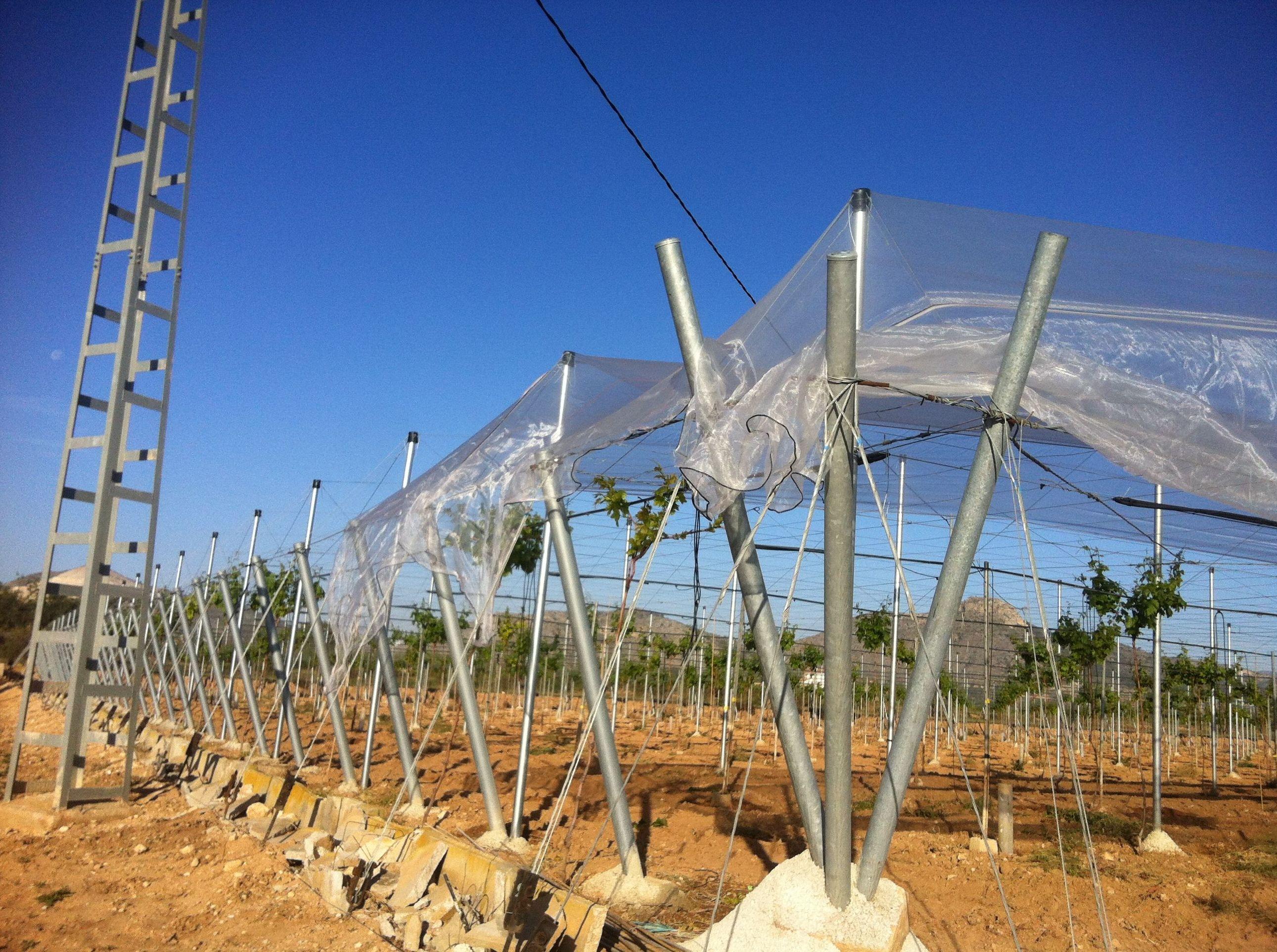 Foto 114 de Infraestructuras y trabajos agrícolas en La Murada – Orihuela | Mantenimiento y Estructuras Agrícolas Mateo e Hijo, S.L.
