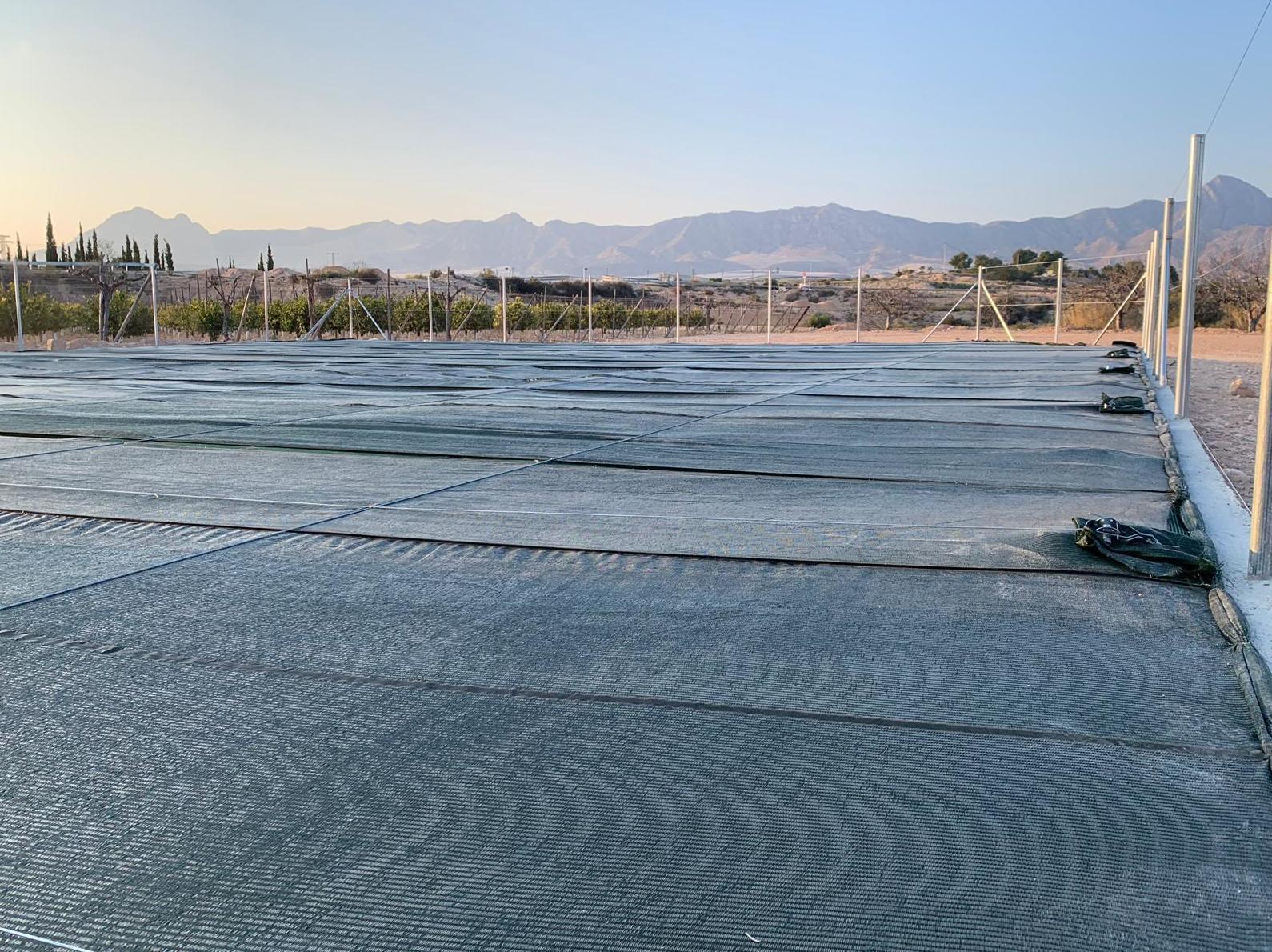 Foto 14 de Infraestructuras y trabajos agrícolas en La Murada – Orihuela | Mantenimiento y Estructuras Agrícolas Mateo e Hijo, S.L.