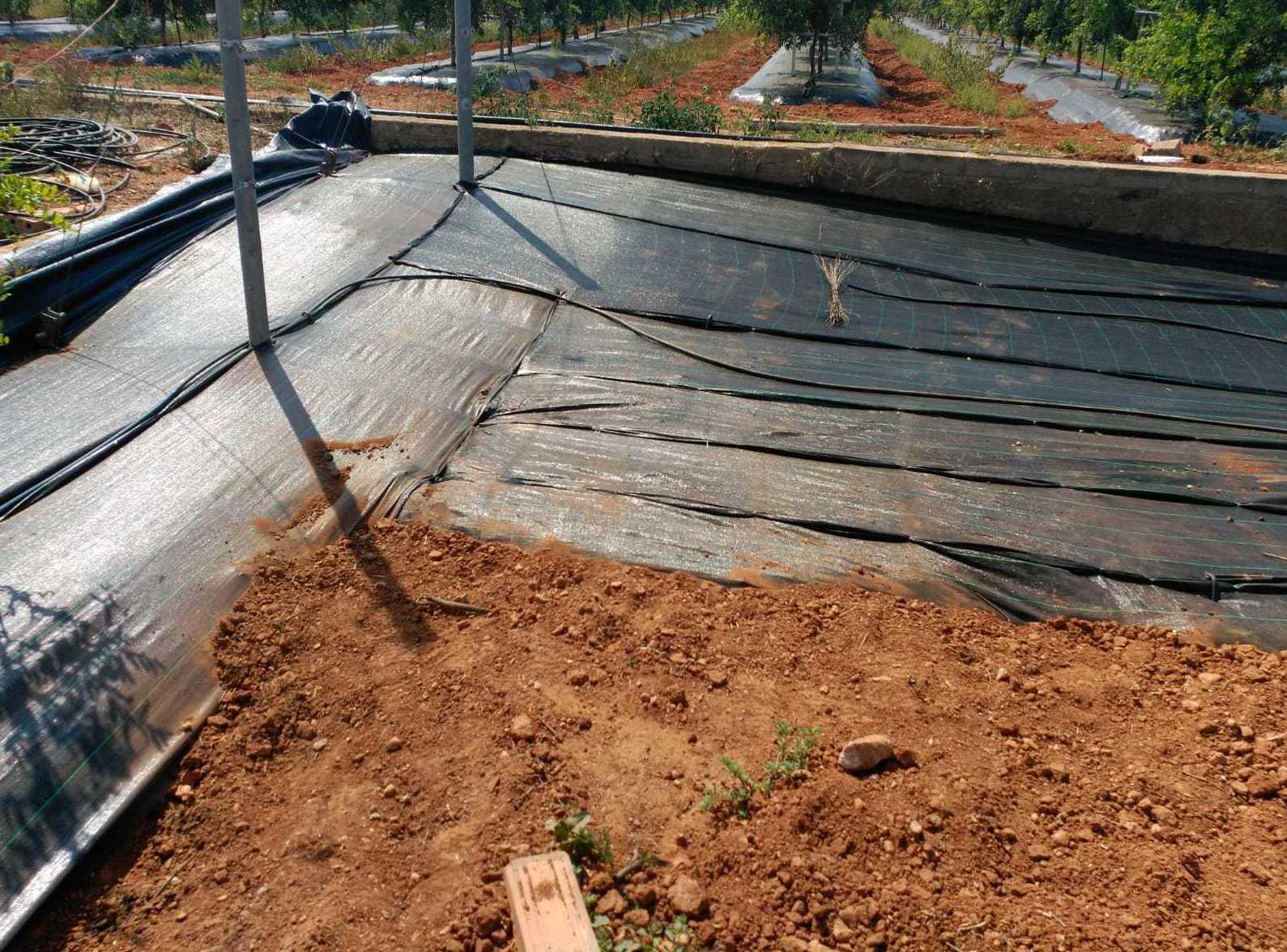 Foto 41 de Infraestructuras y trabajos agrícolas en La Murada – Orihuela | Mantenimiento y Estructuras Agrícolas Mateo e Hijo, S.L.