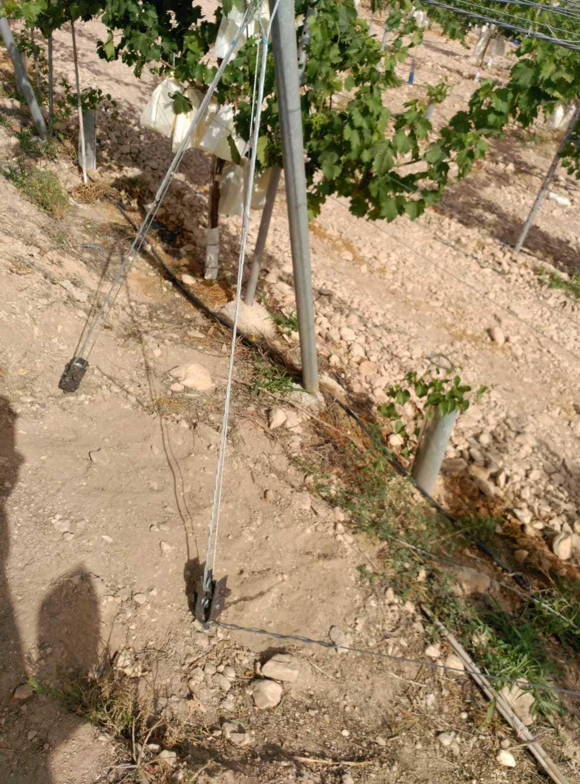 Foto 2 de Infraestructuras y trabajos agrícolas en La Murada – Orihuela | Mantenimiento y Estructuras Agrícolas Mateo e Hijo, S.L.