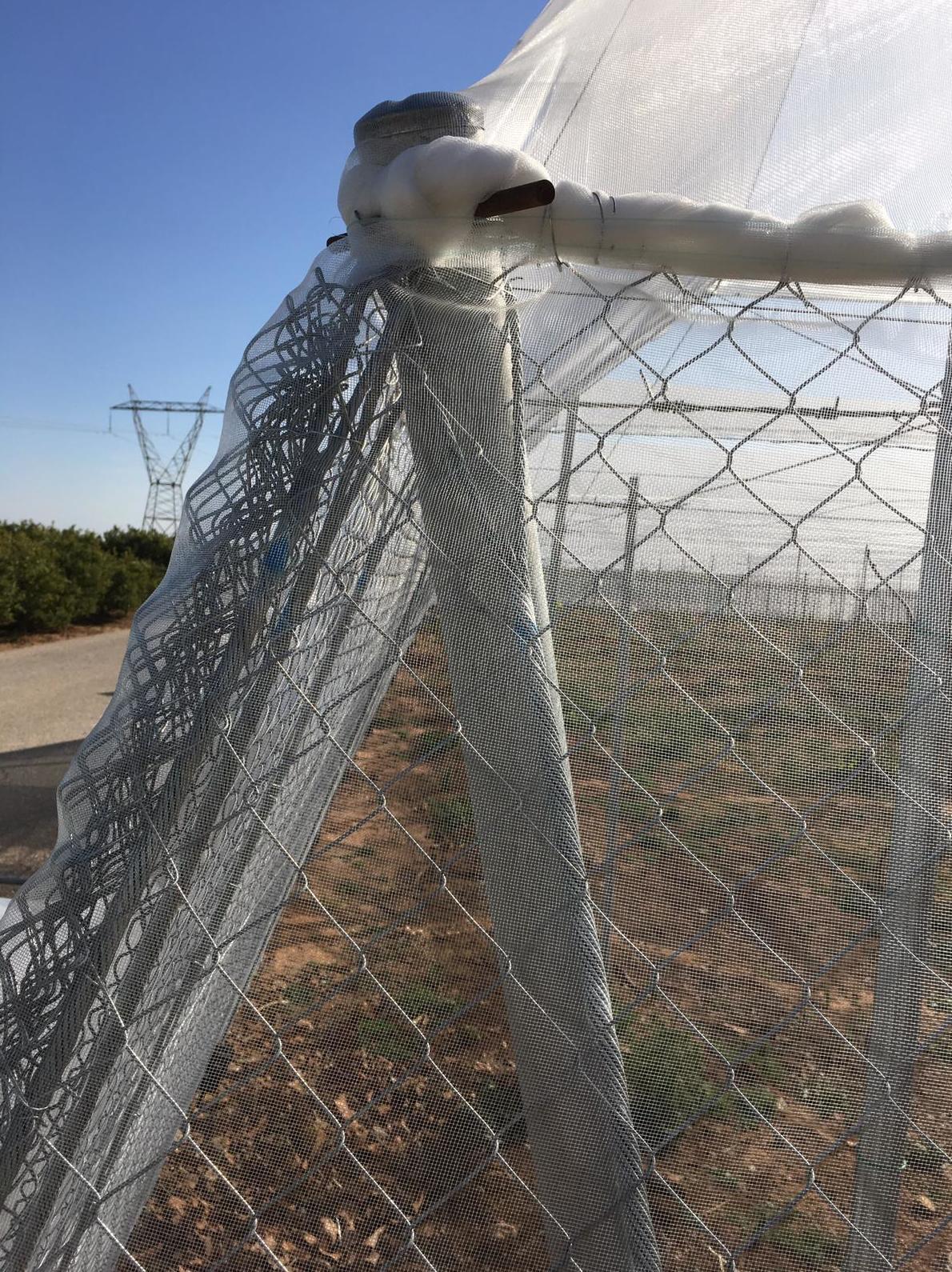 Foto 21 de Infraestructuras y trabajos agrícolas en La Murada – Orihuela | Mantenimiento y Estructuras Agrícolas Mateo e Hijo, S.L.