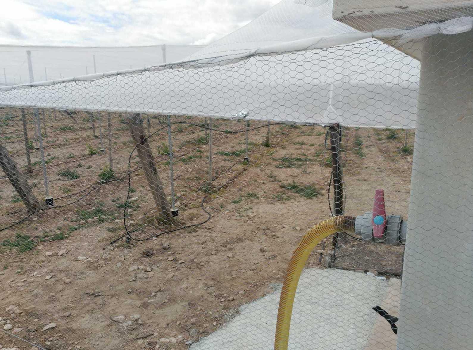 Foto 51 de Infraestructuras y trabajos agrícolas en La Murada – Orihuela | Mantenimiento y Estructuras Agrícolas Mateo e Hijo, S.L.