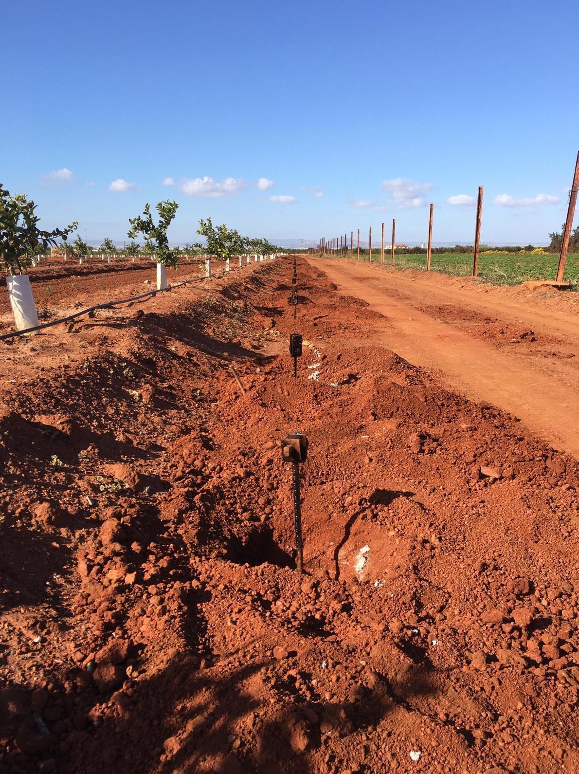 Foto 10 de Infraestructuras y trabajos agrícolas en La Murada – Orihuela | Mantenimiento y Estructuras Agrícolas Mateo e Hijo, S.L.