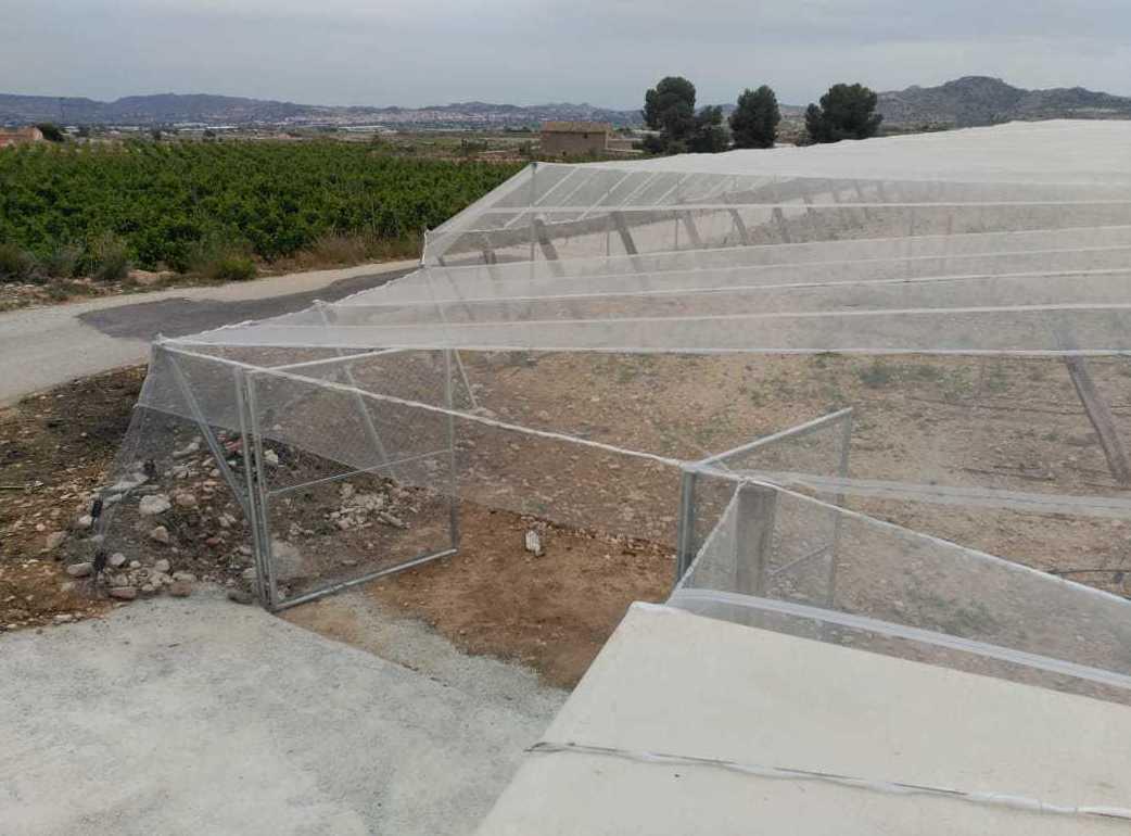 Foto 46 de Infraestructuras y trabajos agrícolas en La Murada – Orihuela | Mantenimiento y Estructuras Agrícolas Mateo e Hijo, S.L.