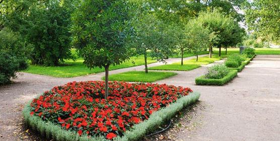 Diseño y creación de jardines: Servicios de Jesús Jardinería y Limpiezas