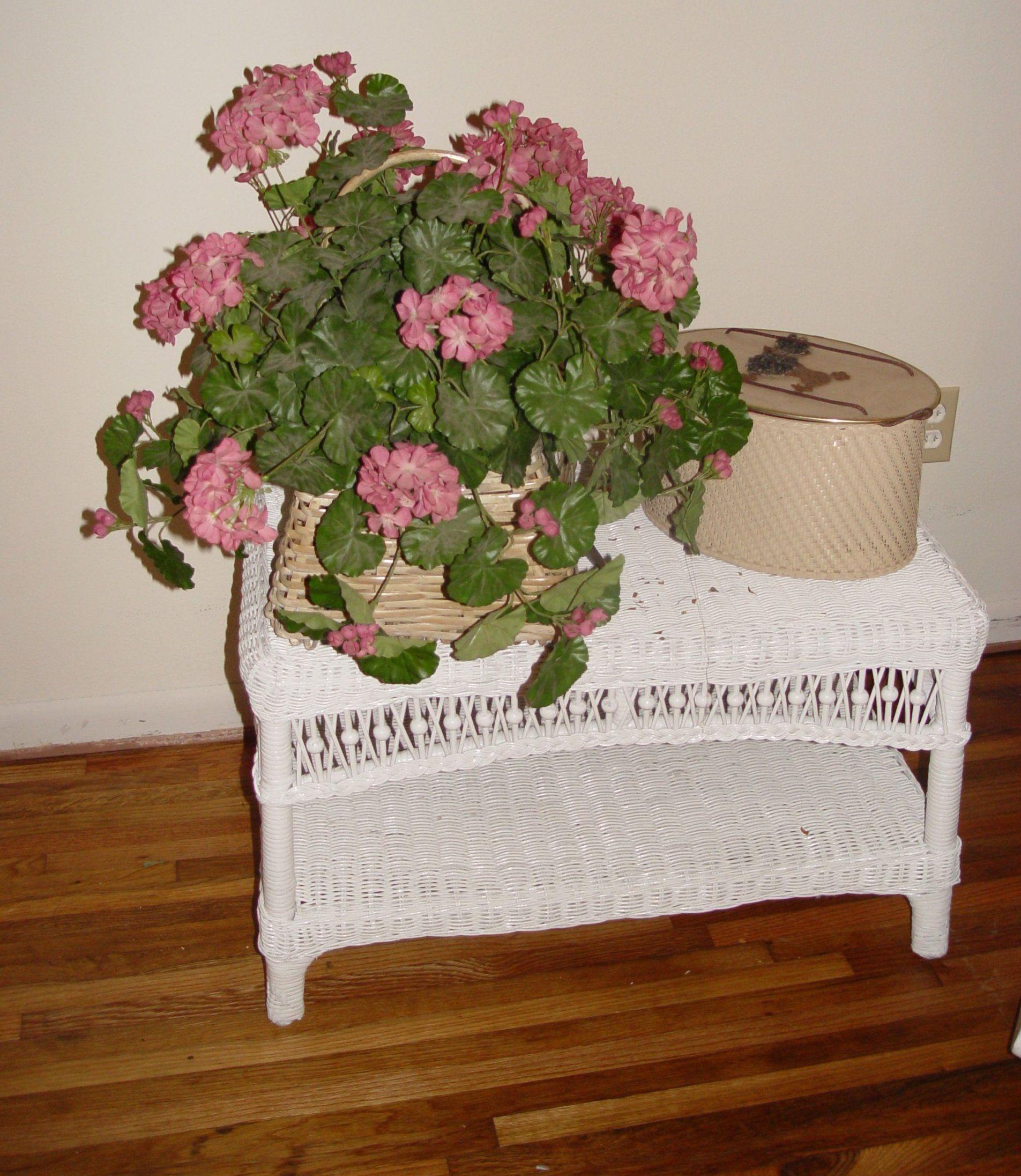 Material vegetal para reparar muebles en Valencia