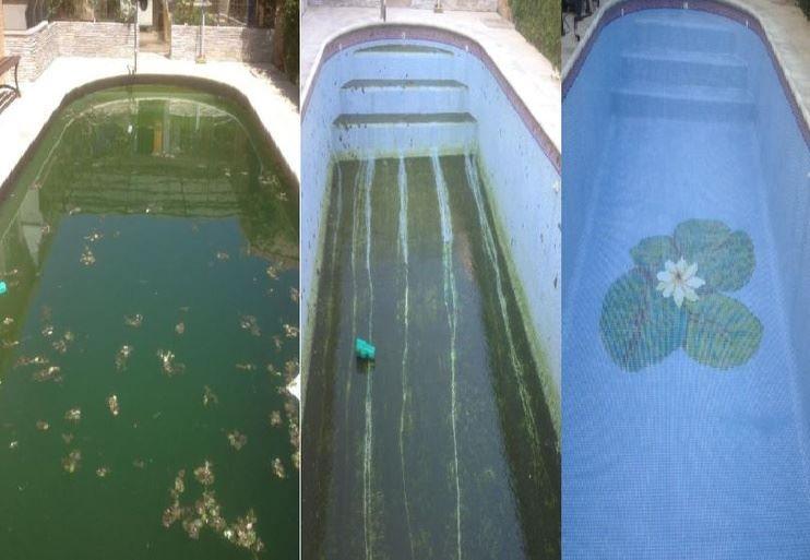 Limpieza de piscinas: Servicios de Limpiezas y Pulidos Rayma