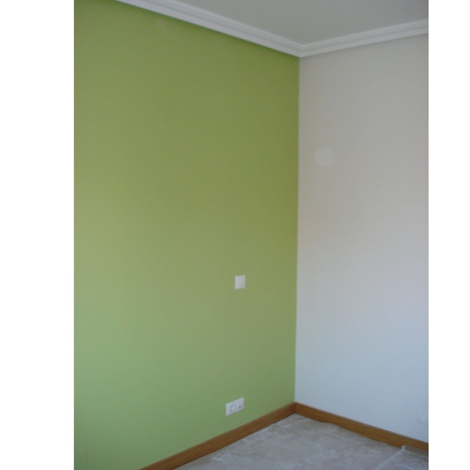 Alisado de paredes: Servicios de El Pintor