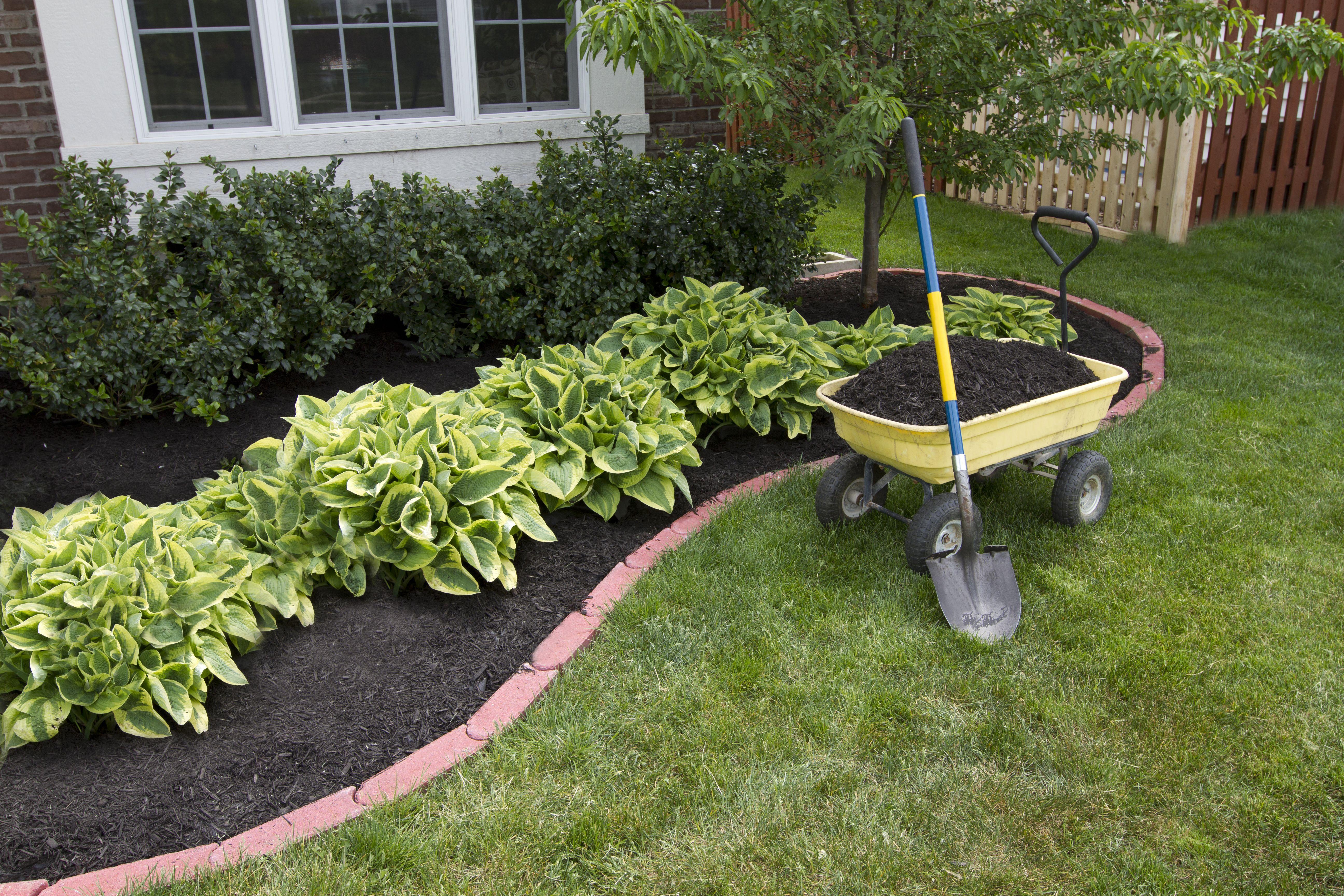 Jardinería: Servicios de Ebroservicios