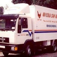 Reparto diario: Productos y servicios de Avícola San Blas, S.L.