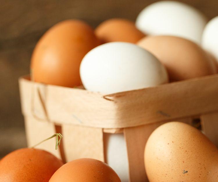Venta de huevos en Guipúzcoa