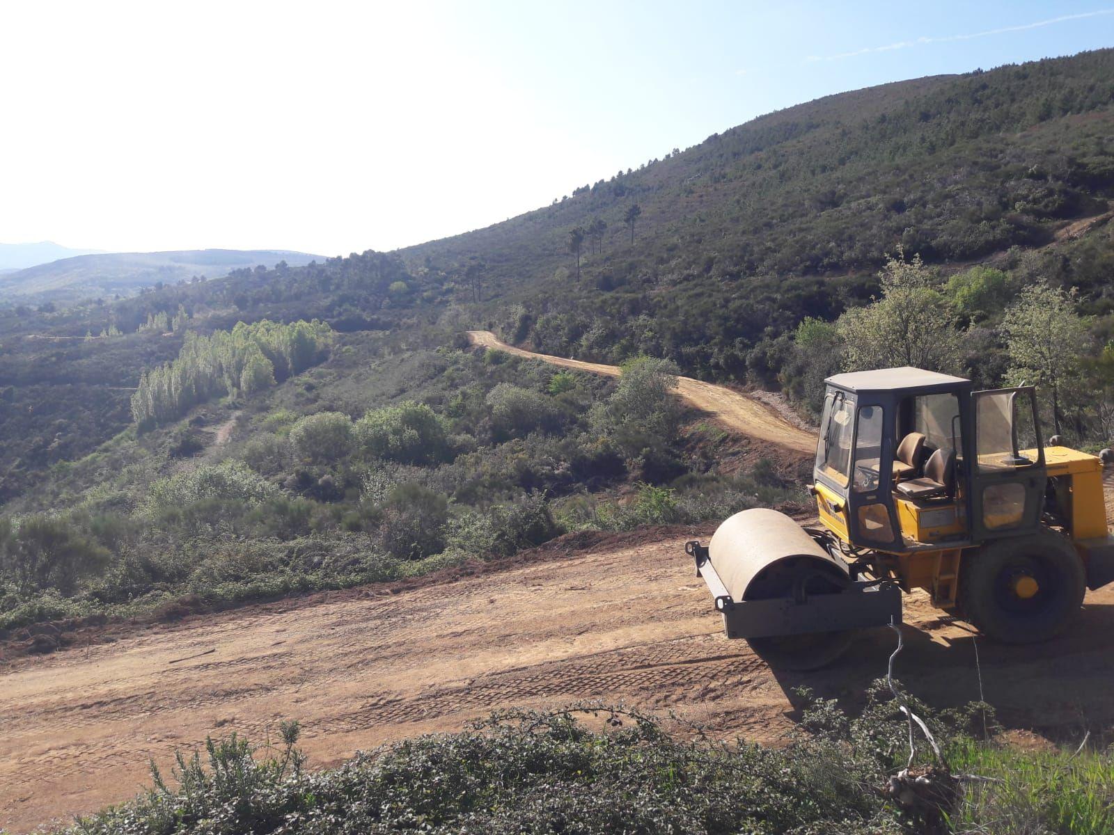 Trabajos forestales Salamanca