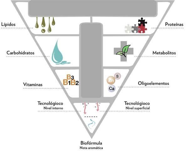 Triconutrición: Productos y tratamientos de Gum Beauty & Art